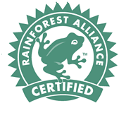 rainforest_seal